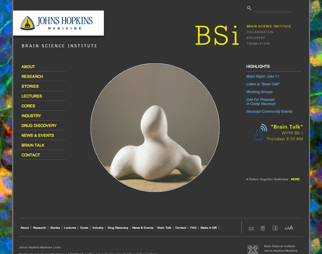 Brain Science Institute Website